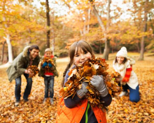 Family Fun for Fall